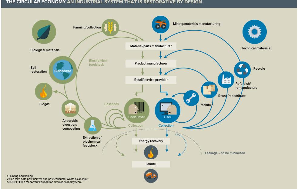 circular-economy-ellen-macarthur-system-diagram-essensus